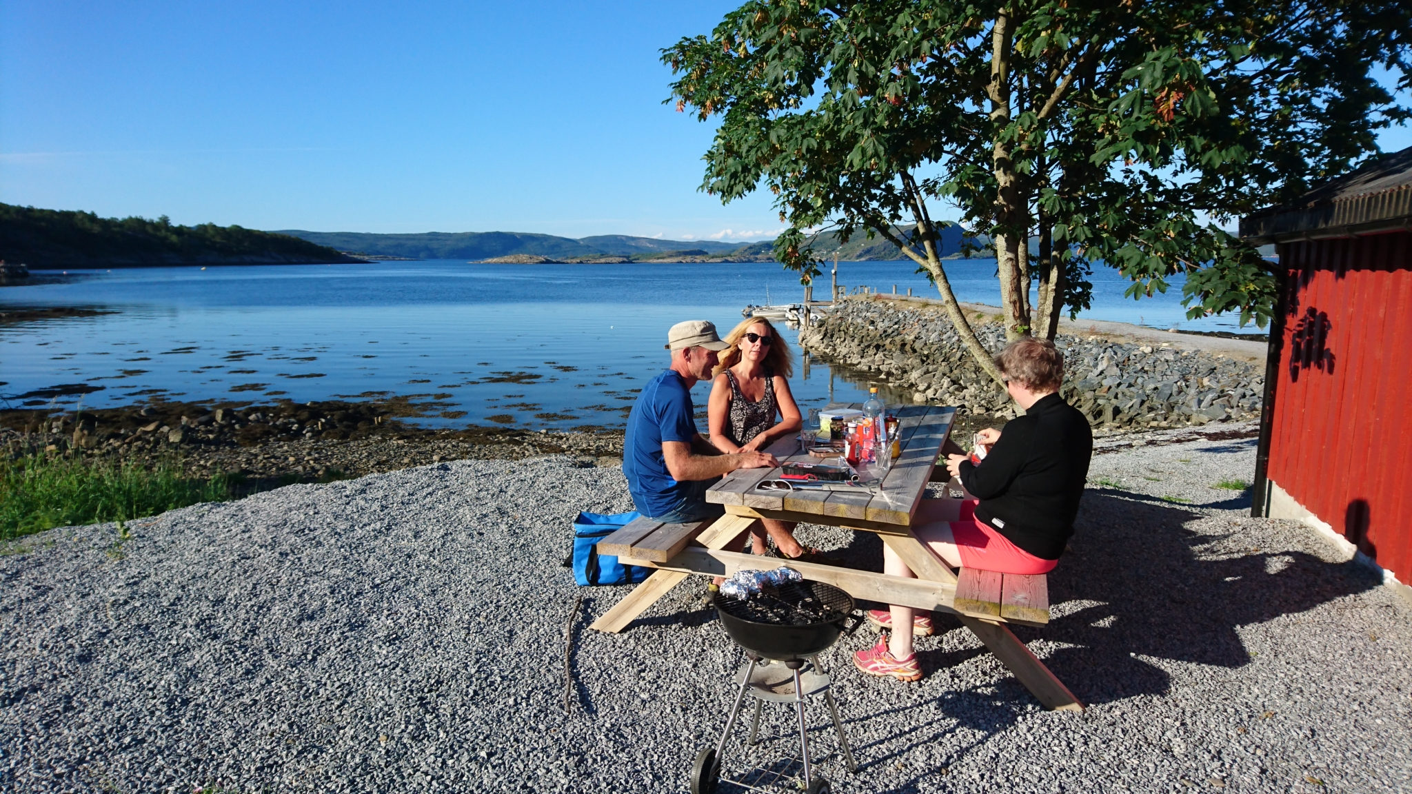 sommer piknik