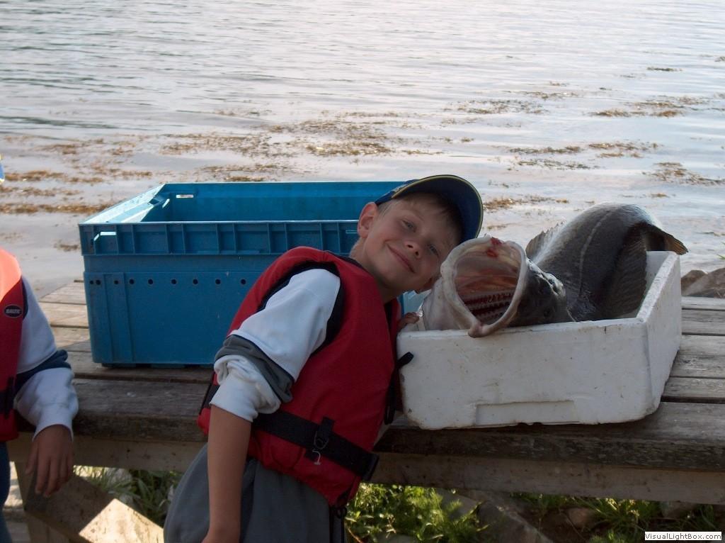 fiske solbakken gård